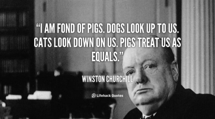 quote-Winston-Churchill-i-am-fond-of-pigs-dogs-look-662